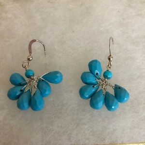 Adorable Turquoise Sterling Silver Earrings